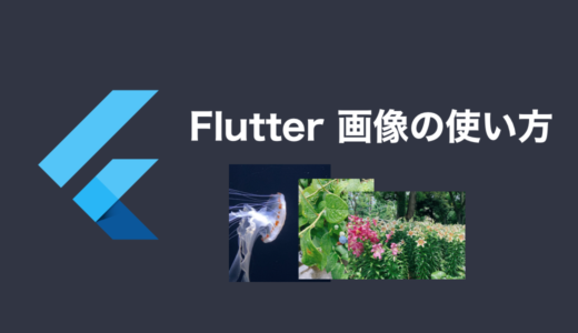 【Flutter 2.2.3】画像アセットの追加方法と画像の表示(Image ウィジェット)