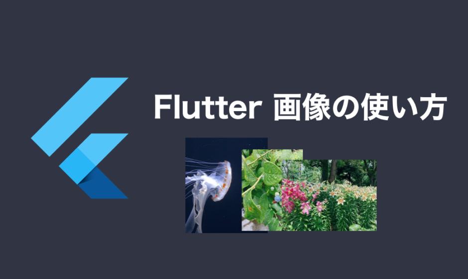 Flutter画像の使い方 アイキャッチ